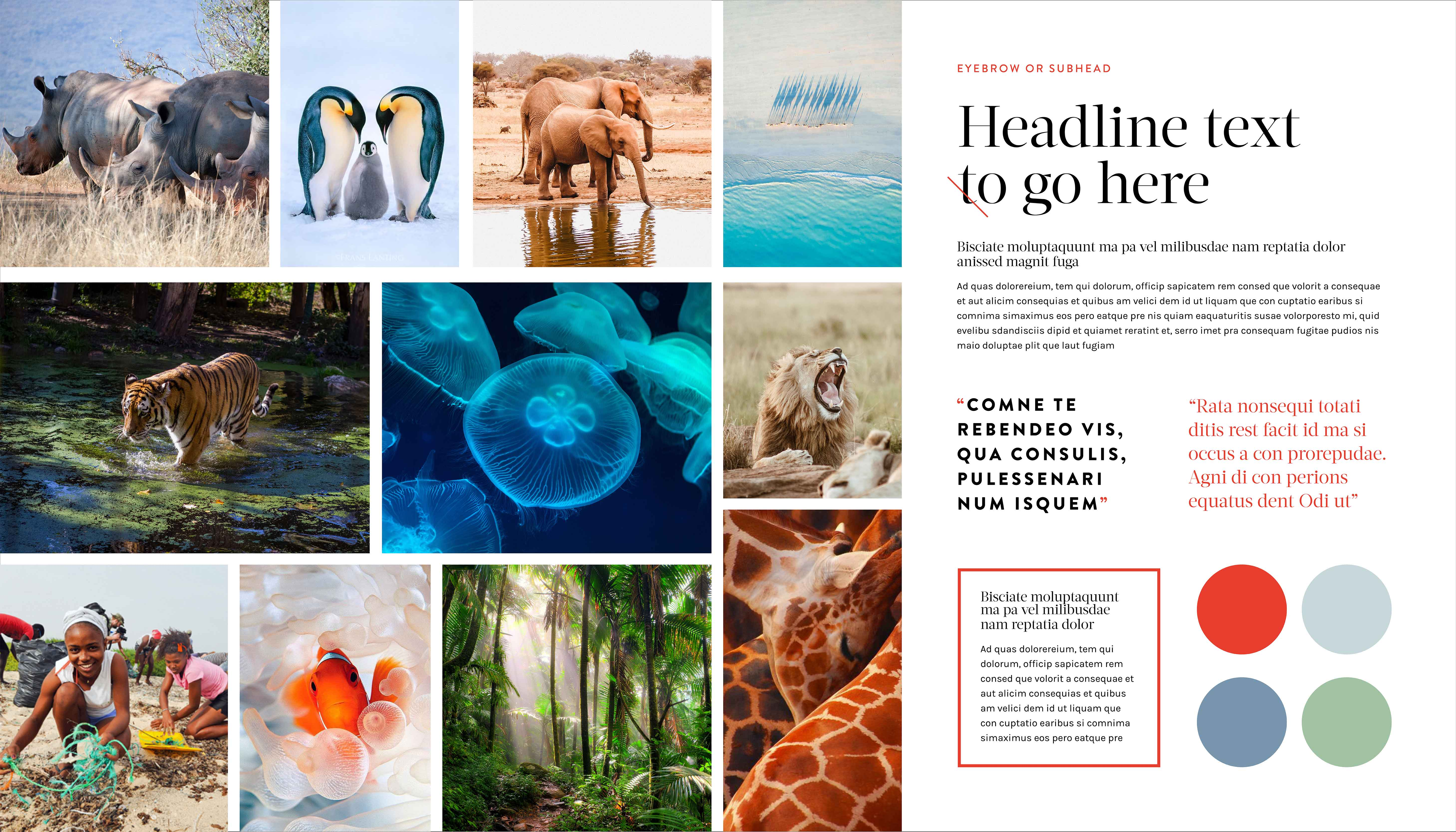Inspiration – share creativity using a mood board with images and colours